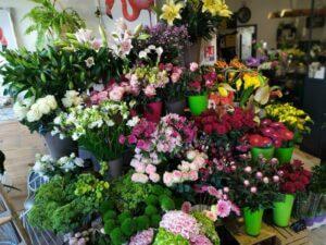 12 Aux floralies
