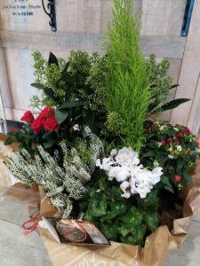 14 Aux floralies